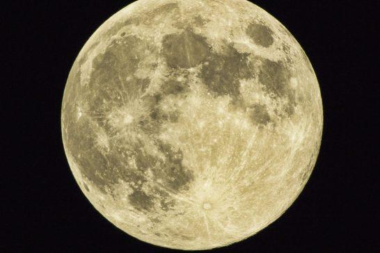 太陽星座 月星座 組み合わせ