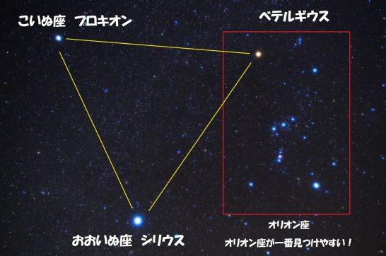 大 冬 三角形 星座 の