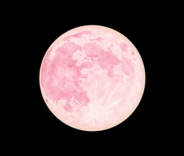 スーパー ムーン ピンク